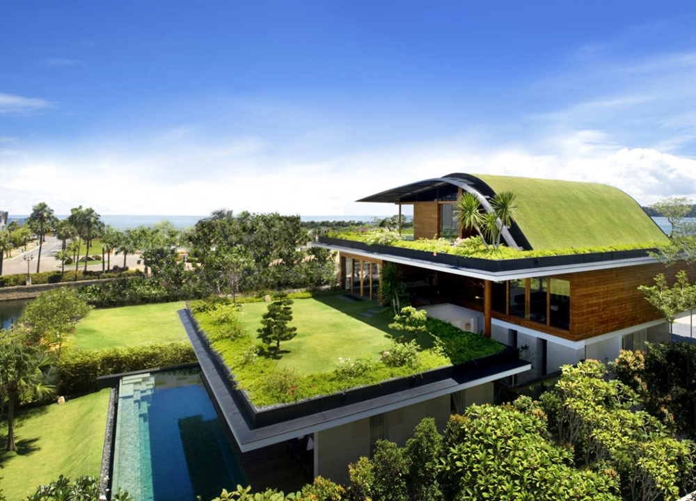 Home with green roofs
