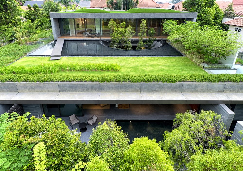 Green vegetation all over the home