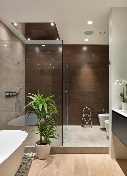 walk in shower with plant