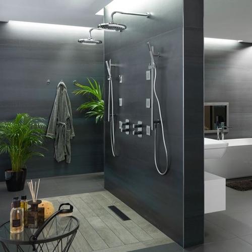 dark walk in shower without door with plants